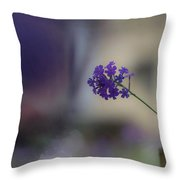 Purple Dominance Throw Pillow
