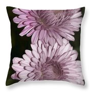 Purple Duo Throw Pillow