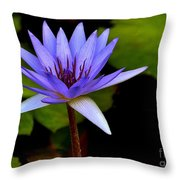Purple Enchantment 6 Throw Pillow