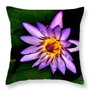 Purple Enchantment Lily 7 Throw Pillow