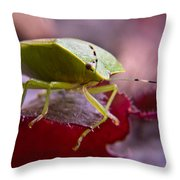 Purple Eyed Green Stink Bug Throw Pillow