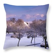 Purple February Throw Pillow