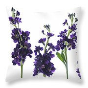 Purple Floral 1 Throw Pillow