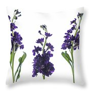 Purple Floral 2 Throw Pillow