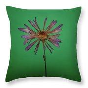 Purple Flower Green Background Throw Pillow