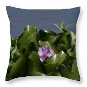 Purple Flower On Bayou Throw Pillow