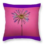 Purple Flower Pink Background Throw Pillow