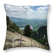 Purple Flowers At Table Rock Overlook Throw Pillow by Kelly Hazel