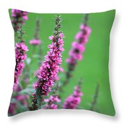 Purple Flowers In A Field Throw Pillow