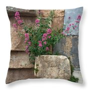 Purple Flowers In Ruins Throw Pillow