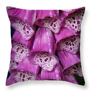 Purple Foxgloves Throw Pillow by Patricia Strand