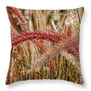 Purple Fountain Grass Abstract By H H Photography Of Florida Throw Pillow