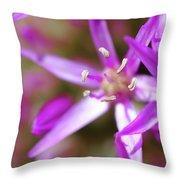 Purple Fragrance Throw Pillow