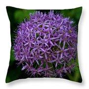 Purple Globe Thistle Throw Pillow