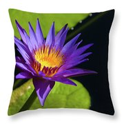 Purple Gold Throw Pillow
