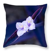 Purple Heart Flowers Throw Pillow