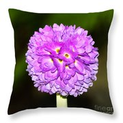 Purple Himalayan Primrose Throw Pillow