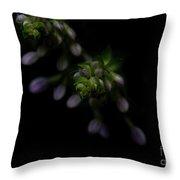 Purple Hosta Budding Duo - Macro Throw Pillow