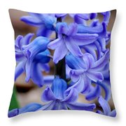 Purple Hyacinth Throw Pillow
