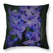 Purple Hyacinths - 2015 D Throw Pillow