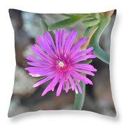 Purple Ice Flower Close Up Throw Pillow