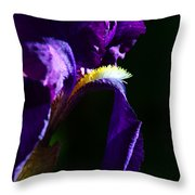Purple Iris 2 Throw Pillow