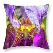 Purple Iris 2018 Throw Pillow