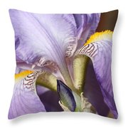 Purple Iris Beauty Throw Pillow