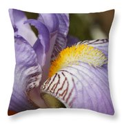 Purple Iris Closeup Throw Pillow
