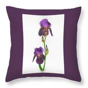 Purple Iris Duet Throw Pillow