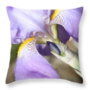 Purple Iris With Focus On Bud Throw Pillow