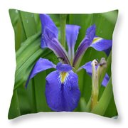 Purple Iris With Insect Throw Pillow