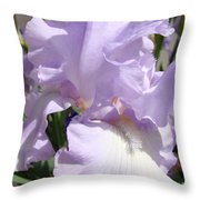 Purple Irises Artwork Lavender Iris Flowers 13 Botanical Floral Art Baslee Troutman Throw Pillow