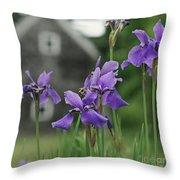Purple Irises Throw Pillow