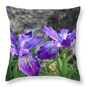 Purple Irises With Gray Rock Throw Pillow