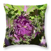 Purple Kale Throw Pillow