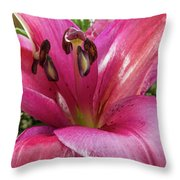 Purple Lilly In A Flower Bouquet Extreme Close-up Throw Pillow