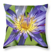 Tropical Purple Water Lily Throw Pillow
