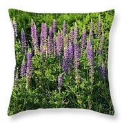 Purple Lupines In Summer Throw Pillow