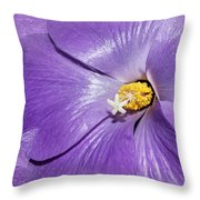 Purple Mallow Mist Throw Pillow
