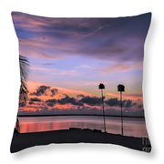 Purple Martin Sky Throw Pillow