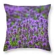 Purple Meadow 3 Throw Pillow