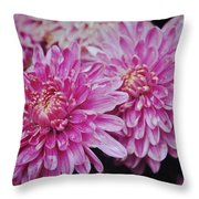 Purple Mums Throw Pillow