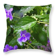 Purple On Green With Raindrops Throw Pillow