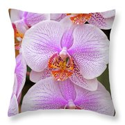 Purple Orchid 1 Throw Pillow