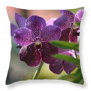 Purple Orchid Beauty Throw Pillow