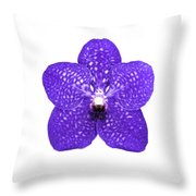 Purple Orchid On White Throw Pillow
