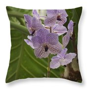 Purple Orchids 2 Throw Pillow