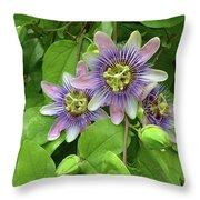 Purple Passion Vine Throw Pillow
