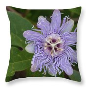 Purple Passionflower #2 Throw Pillow